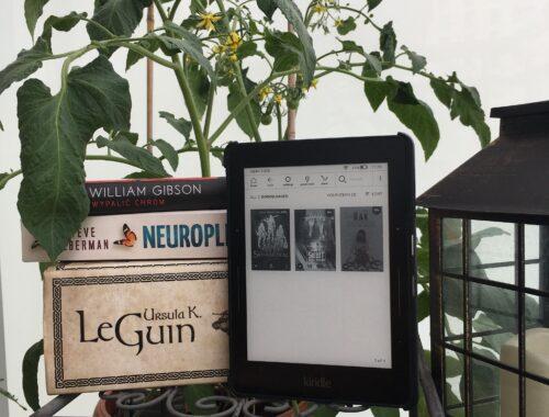 Podsumowanie półrocza – książki na tle pomidorów
